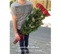 Голландская роза 120 см