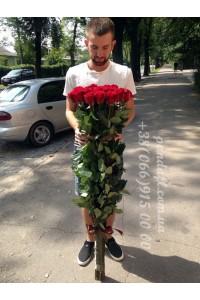 Голландская роза 130 см