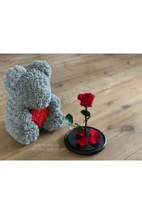 Красная роза в колбе и мишка из роз